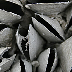 perna-home-grid